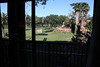 We got a savannah view!