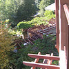 View from Grand Californian Hotel