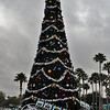 Hollywood Studios Christmas Tree.