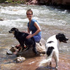 Caroline and the dogs in the San Juan River near Telluride.