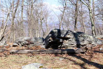 Chris and I go to the Delaware Water Gap, at the Dunnfield Creek Natural Area, NJ.