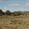 By the 1800's all of the Moai were toppled over and lying scattered on the ground.  Ahu Akahanga