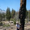 Dan and the burnt tree