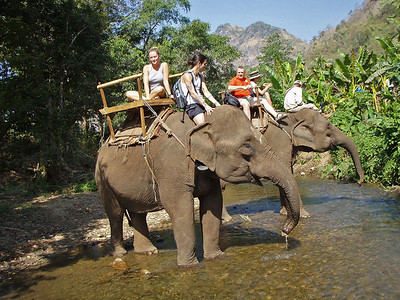 Ellen and Anthony on an elephant ride