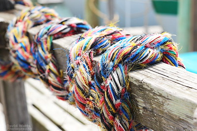 Colorful Rope in Beaufort