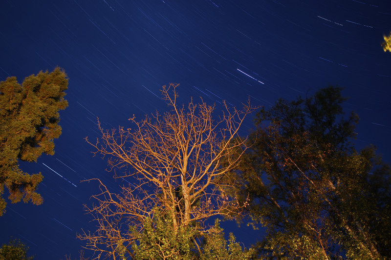 A 25 minute exposure to show some star trails, and the trees surrounding my mom's cabin. The trees are illuminated by our camp fire. Look at the original size picture into the large gap at the bottom and slightly to the right to see a meteor.<br /> <br /> If you do look at the original size picture, don't get too picky about the hot pixels, I didn't have time to go through and clean up the imperfections. It's not too bad for the first time!