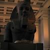 Egyption Head
