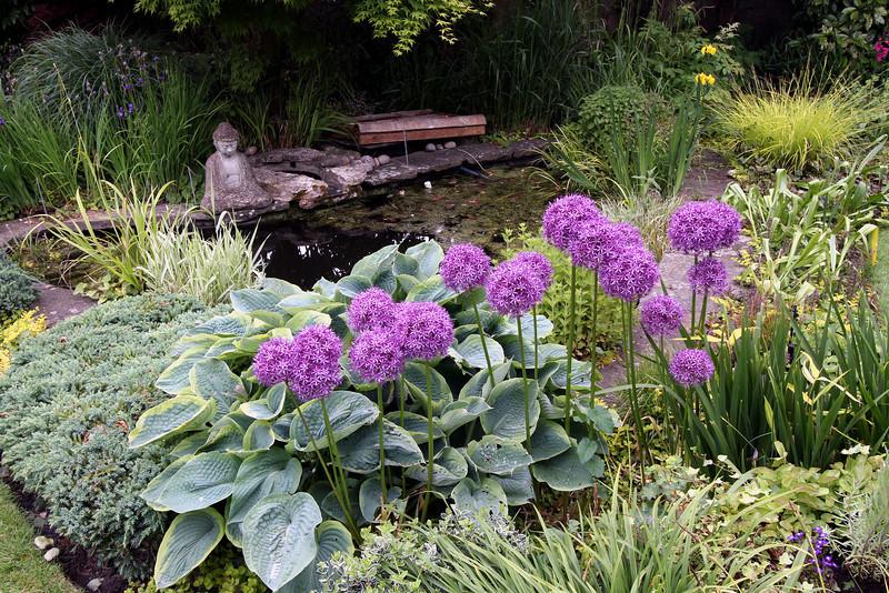 Bath - Ayrlington B&B garden
