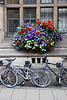 Flowers and Bikes in Oxford