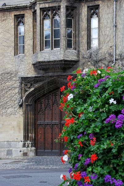 Collage Door -  Oxford