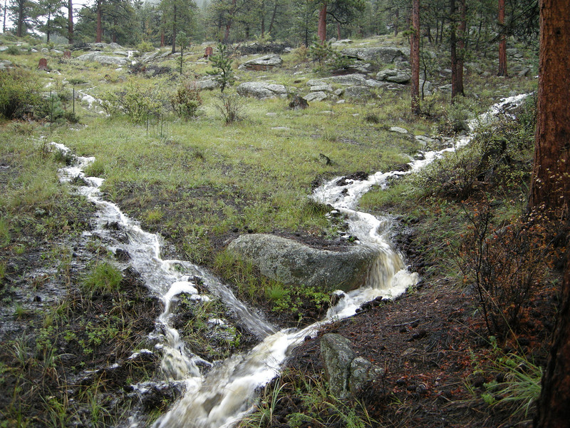 "4.5"" of rain fell Wednesday night and Thursday."
