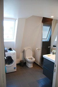 Bathroom with shower (at right) and washer.