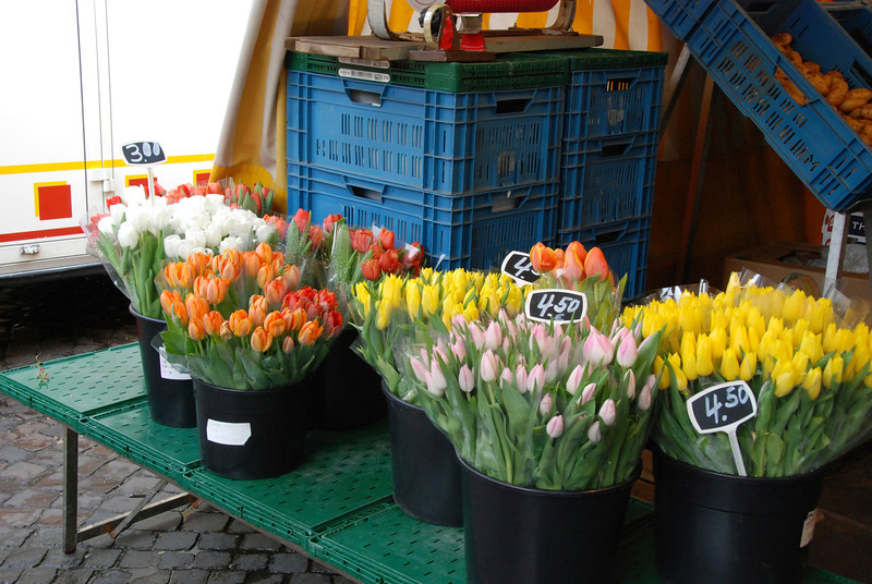 Tulips in the city flower market.