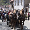 Horsedrawn wagon on streets of Karlstejn.