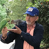 Alan feeding a feral parakeet in Hyde Park gets an unexpected visit from a squirrel.