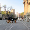 Horse-drawn carriage in center of Seville.