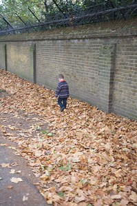 Autumn leaves are fun the world over.  Crunch, crunch.