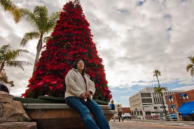 La Jolla, Dec 2010