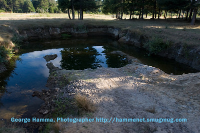 One of the many ponds, recently deepened to hold year-round water.