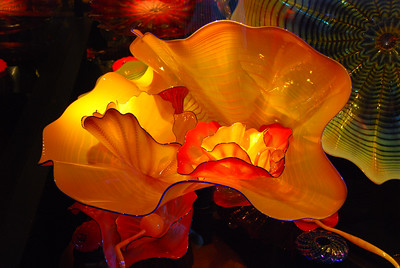 A piece of Chihuly's work at the Montery Bay Aquarium.