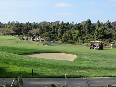 The nature preserve that lays alongside this golf course is attempting to establish native plants that are drought-tolerant; an amusing contrast to the profligacy of the wealthy playground next door.