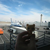 Gold Kitty looks at the plane she's going to fly in.