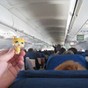 Gold Kitty ticket was for a cheap seat near the back of the plane but she doesn't mind.