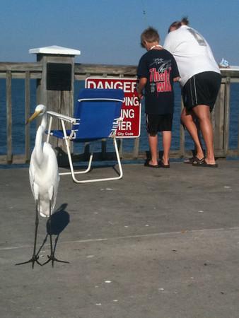Florida 2010 trip