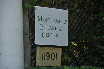 For more information on the Mongomery Botanical Center, click on website below:  http://www.montgomerybotanical.org