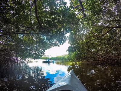 A trip with IKayak out of Sarasota, FL.