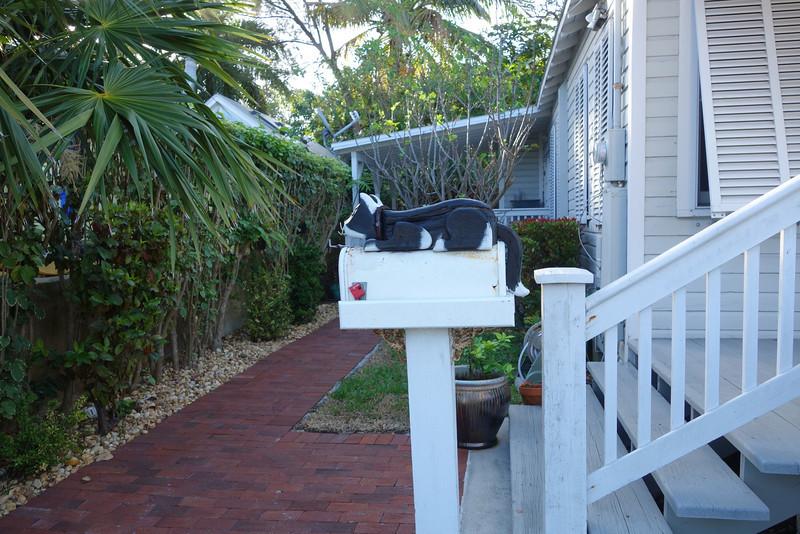unusual mailbox (taken for our friend, Glenna)