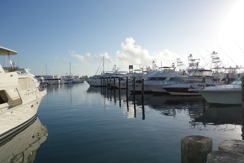 one of the marinas we saw on our morning walk