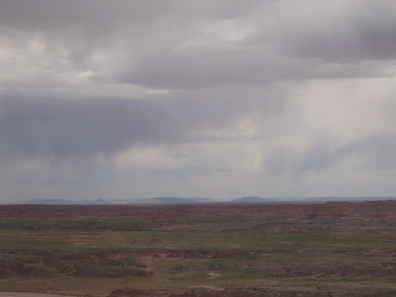 Looks like that storm is coming this way. It was good, though; it washed the roasted crickets off my bike.