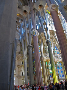 The incredible interior of the Sagrada Familia. The columns are reminiscent of trees.