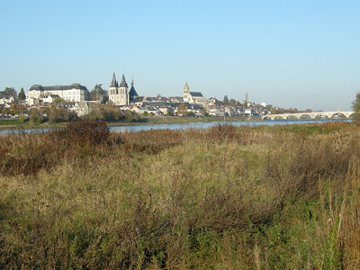 A quite pleasing setting for a town. Blois has a population of about 50,000 people, and the city itself dates from before the sixth century AD.