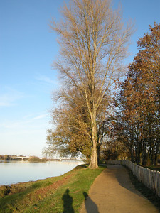 Path along the Loire. There is an extensive system of walkways and bike paths all through the region. Very human-friendly!