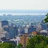 Montreal thru the Mount Royal Trees