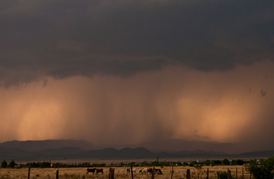 5/10/2009 - east of Marathon, TX Sunset, supercell hail core, and cattle