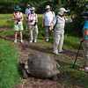 Some of our group learning about tortoises.
