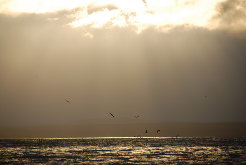This is one of my favorite shots ever.  The glory of the sun breaking through the clouds and the birds.