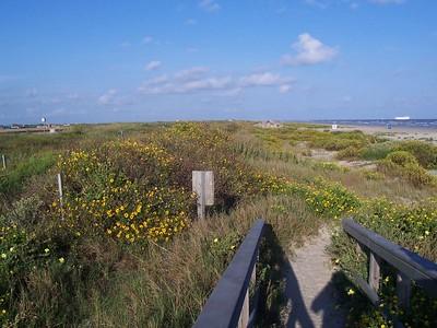 Footbridge to the beach.