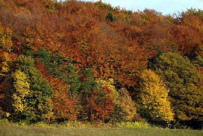 Rhoen Mountains, Germany 2005