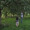 Magnus and Mama are cherry picking.