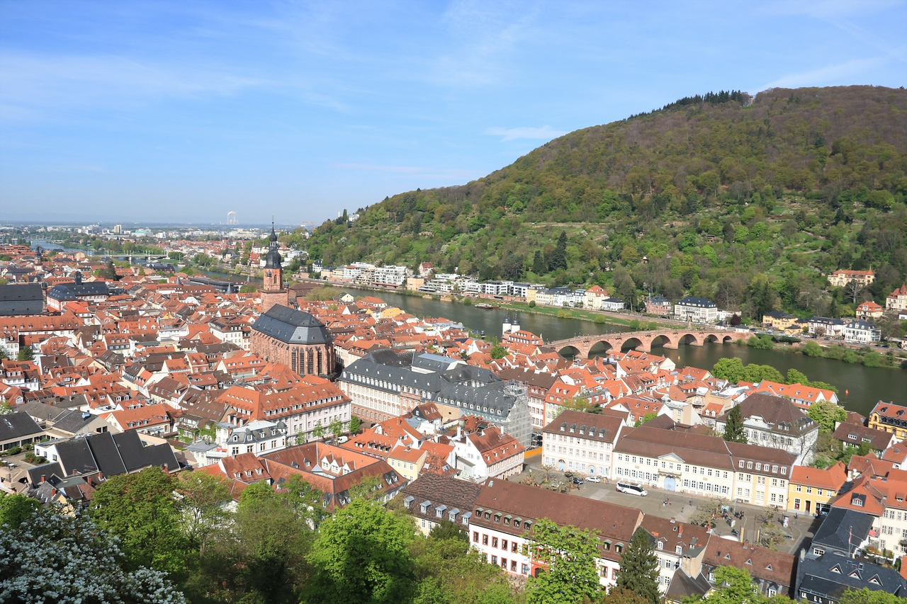 Old Town Heidelberg from the castle.