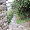 This is the famous Inca Trail to Machu Picchu.