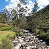 A little past Lares, we stopped at a scenic site to have lunch by a glacier filled stream.