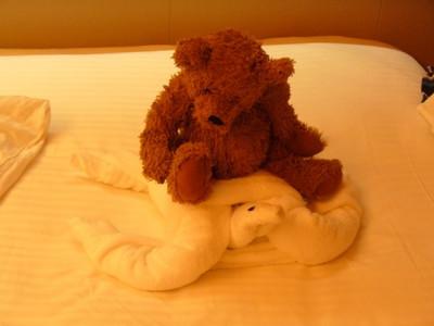 Teddy riding a turtle towel