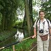 Monet's water lily garden