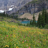 Since 11 miles wasn't enough for one day, we added a 4 mile side hike to Iceberg Lake.