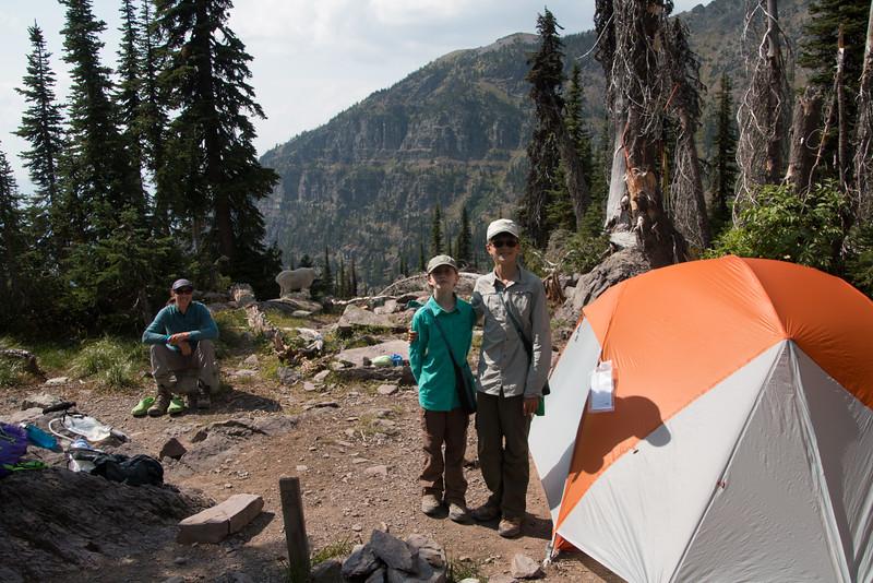 Camp #1 - Sperry. We had company! Clomp, clomp, clomp all night around the tent.